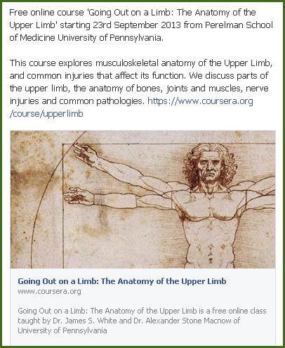 Modern Free Online Anatomy Class Ornament - Anatomy And Physiology ...